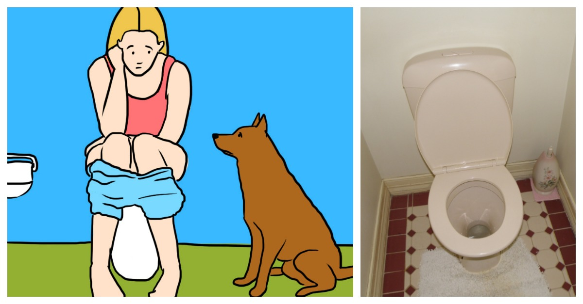 If your dog always follow you to the bathroom, that's what he's trying to tell you..