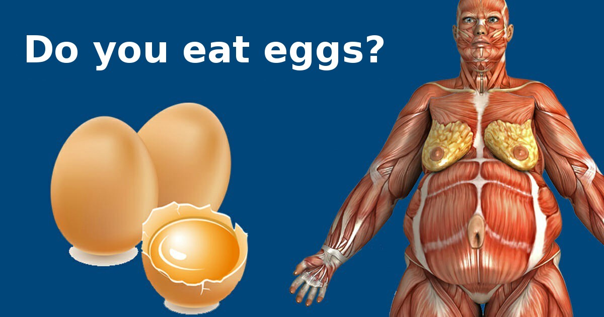 Doctors reveal: This is what happens in your body when you start eating two eggs a day