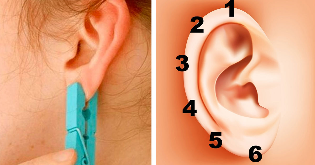 Place a clothespin on the ear for 5 seconds. The unexpected effect will surprise you and big!