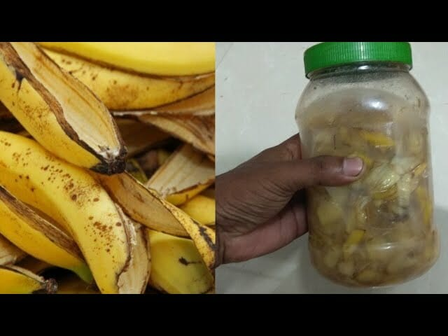 You'll never throw a banana peel again after you read it - the reason is simply genius